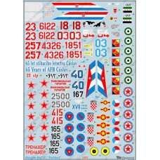 BGM-48002 Begemot decals 1/48 Mikoyan MiG-21 Fishbed Soviet Jet Fighter