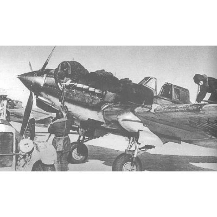 EXP-041 Ilyushin Il-2 Soviet WWII Ground-Attack Aircraft