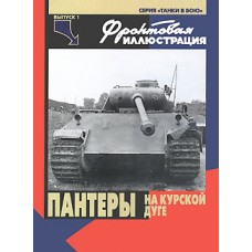 FRI-017 Panther Pz.Kpfw V German WW2 tank at the Kursk Salient book