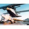 PLS-100105 1/100 Myasishchev M-4/3M Bison strategic bomber Full Size Scale Plans (2 pages)