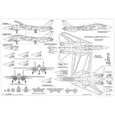 PLS-48010 1/48 Grumman F-14 Tomcat fighter Full Size Scale Plans (A2 page)